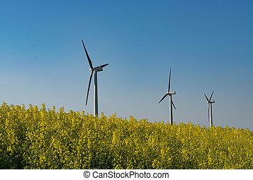 Renewable energy - wind turbines on yellow rapeseed