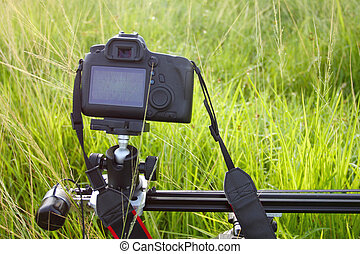 Camera on a tripod - Camera on a tripod recording a green...