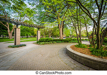 Walkway and trees, at the Allan Gardens, in the Garden District, Toronto, Ontario.