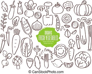 Set of vegetables doodles - Set of hand drawn vegetables...