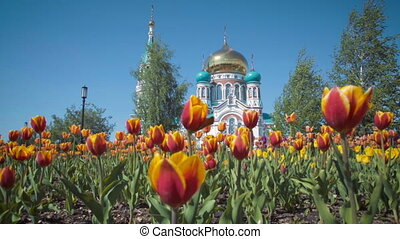 Uspensky Cathedral in Omsk on background of beautiful tulips...