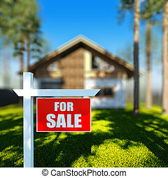 Home For Sale sign in front of chalet house.