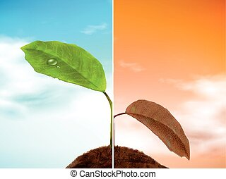 comparison of seedling 3D illustration - well growing and...