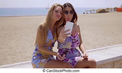 Mischievous young ladies taking a selfie on a mobile phone...