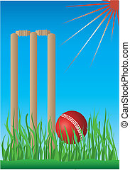 cricket with grass and blue background