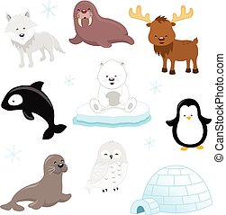 Arctic Animals - Collection of cute arctic animals.