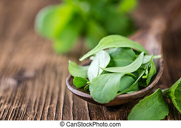 Wooden table with Stevia leaves selective focus - Old wooden...