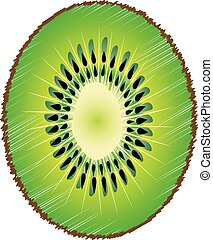 Kiwi slice close up isolated on white background