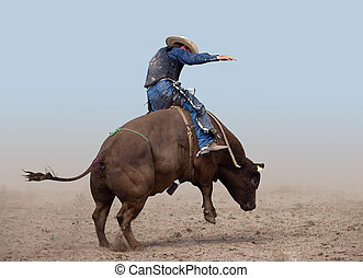 Bull Rider on a clear background