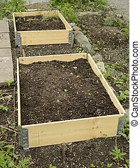 Organic Gardening on the Allotment