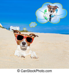 summer vacation dog - jack russell dog buried in the sand at...