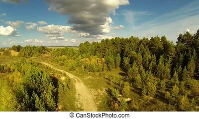 Rural road in steppe in summer day - Flying over the forest...