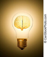 brain light bulb lit
