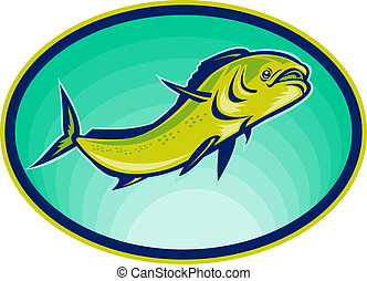 dolphin fish or mahi mahi swimming viewed from a low angle.