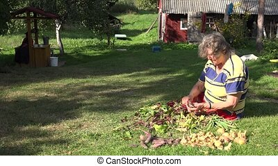 Senior country woman process fresh beetroot vegetables in...
