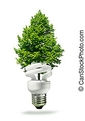 Eco lamp and tree - Eco lamp with new green tree growing...