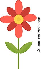Flower isolated vector illustration - Colored cosmos flowers...