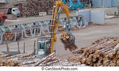 Remote control of Conveyors logs sorting machine - Lumber...