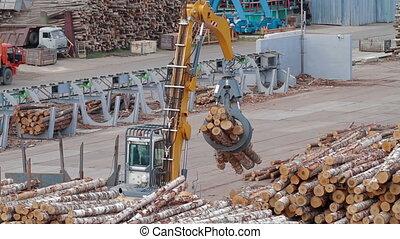 Remote control of Conveyors logs sorting machine - Lumber...