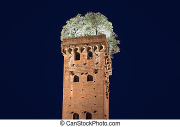 Medieval Tower with Trees - Photographed at Night