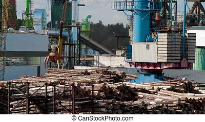 Modern lumber factory Crane load log trucks - Lumber...