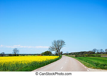 Countryroad by springtime in a rural swedish landscape