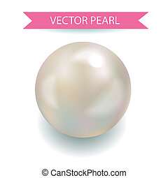 Realistic Vector pearl Jewerly Illustration