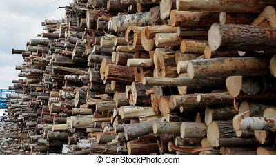 Felled tree, lumber production, raw materials - Felled tree...
