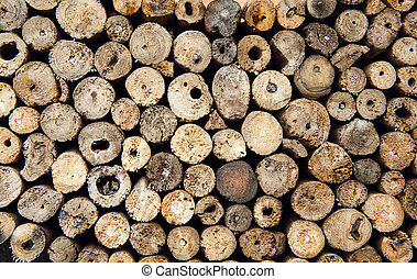 Background dry teak logs stacked up on top of each other -...