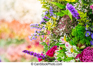 Colorful flowers - Many various colorful flowers in a...