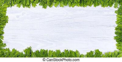 New fir tree branch tips on white wood for the annual...