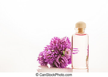 Essence of red clover flowers isolated - Essence of red...