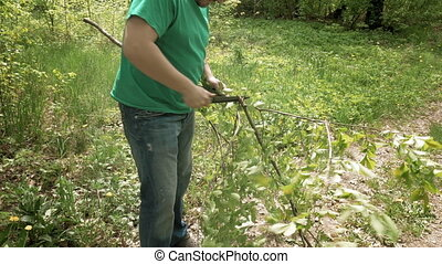 Man cuts saws tree branch in green summer forest - Man cuts...