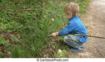 Little boy child plays with rod in rural outdoors - Happy...