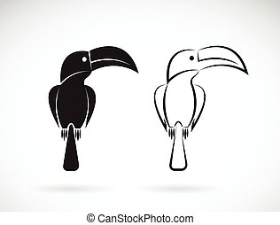 Vector image of an toucan bird design on white background