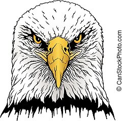 Eagle Head is an illustration of a hand drawn bald eagles...