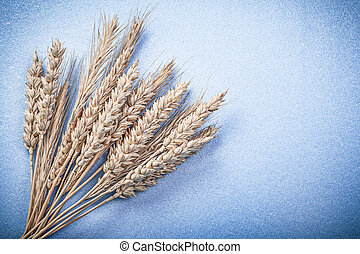 Ripe rye wheat ears on blue background directly above