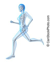 woman jogger - 3d rendered illustration of a running female...