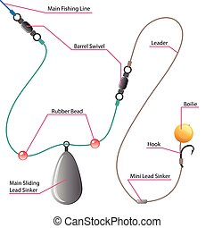Boilie setup diagram for Carp fishing