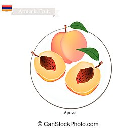 Fresh Apricot, A Popular Fruit in Armenia - Armenia Fruit,...