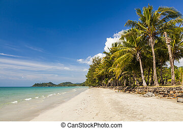 Tropical landscape with coconut palms and sandy beach. Koh Chang. Thailand.