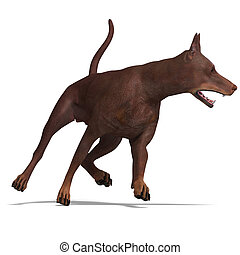 Doberman Dog 3D rendering with clipping path and shadow over...