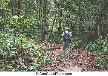 Backpacker exploring the majestic jungle of Kubah National...