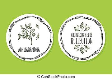 Ayurvedic Herb - Product Label with Ashwagandha - Ayurvedic...