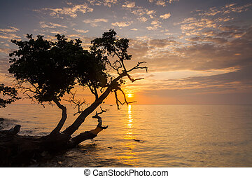 Beautiful sunset on a tropical island. Koh Chang. Thailand.