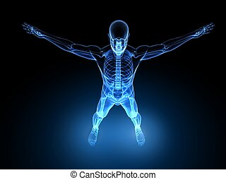 x-ray male model - 3d rendered illustration of a transparent...