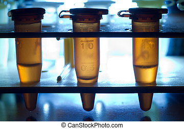 Centrifuge tubes - Micro-centrifuge tubes in a rack