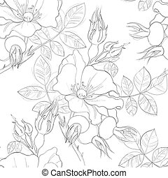 seamless pattern of wild roses painted lines