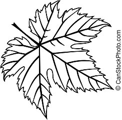 fig leaf - vector,fig leaf,illustration,garden,
