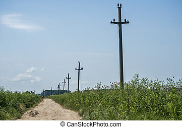 Dirt road and abandoned power poles